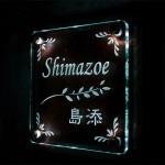 shimozoeled.jpg