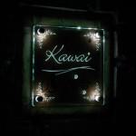 kawaifsled2.jpg
