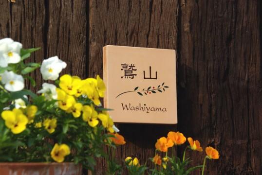 washiyama.jpg
