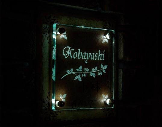 kobayashifsled.jpg