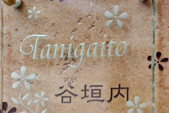 tanigaitofsup.jpg