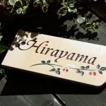 hirayama1.jpg