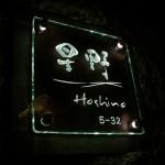 hoshinofsled2.jpg