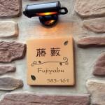fujiyabu.jpg