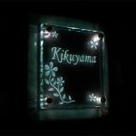 kikuyama3.jpg