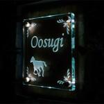 oosugi1.jpg