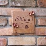 shima1.jpg