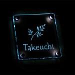 takeuchi3.jpg