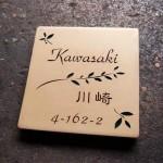 kawasaki.jpg