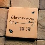 umezawa.jpg