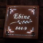 ebine2.jpg