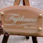 fujikawa1.jpg
