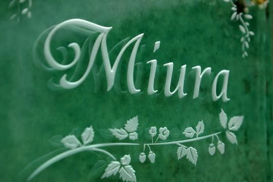 miurafsled1.jpg