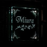 miurafsled3.jpg