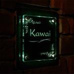 kawaifsled2009.jpg