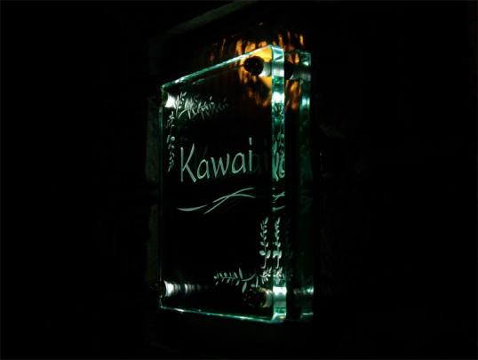 kawaifsled20091.jpg
