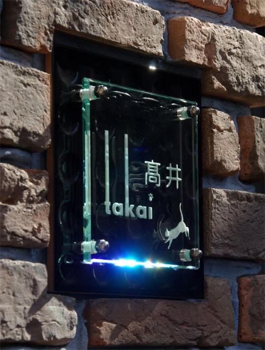 takaifs4.jpg