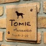 tomie1.jpg