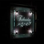 fukuda1fsled.jpg