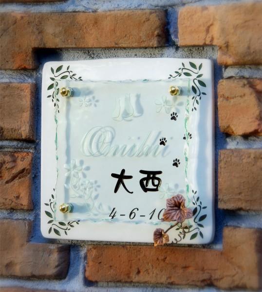 onishi1fsled.jpg