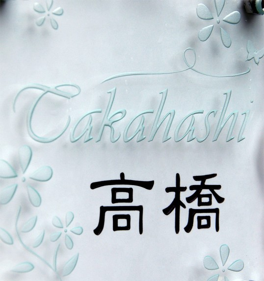 takahashifsled3.jpg