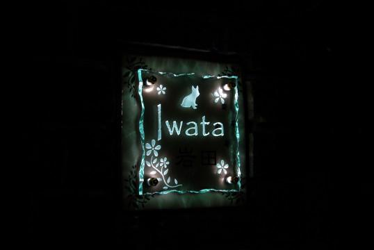 iwataNFSLED
