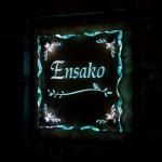 ensakoFSLED1