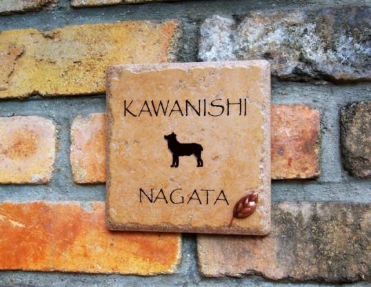 kawanishi3