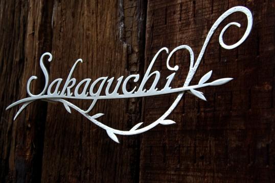 sakaguchiSUS2
