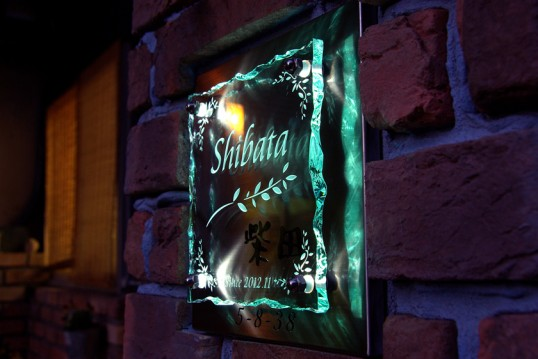 shibataFSLED1