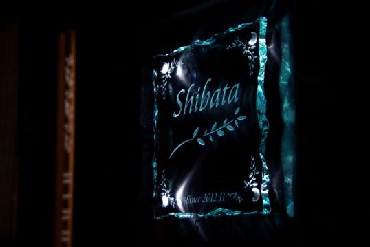 shibataFSLED2