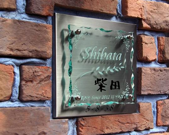 shibataFSLED3