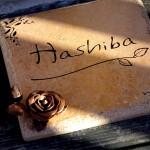 hashiba1