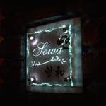 sowaFS
