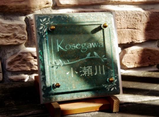 kosegawaFSLED2
