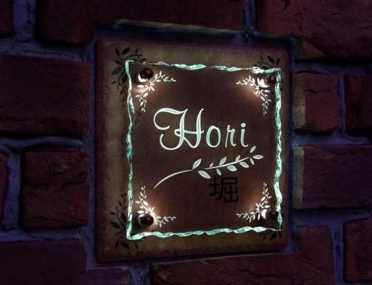 horiFSLED1