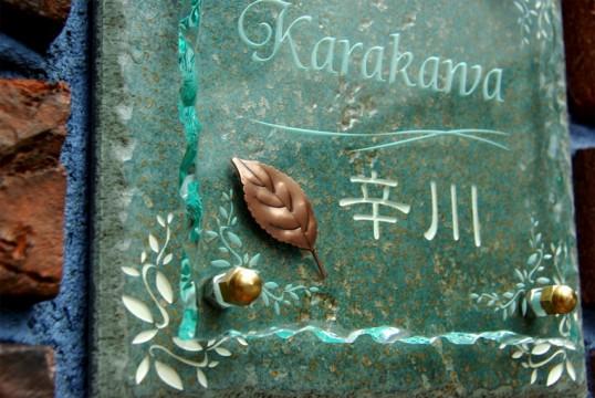 karakawaFSLED5