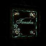 tanakaFSLED4