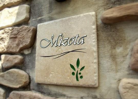 mizota1