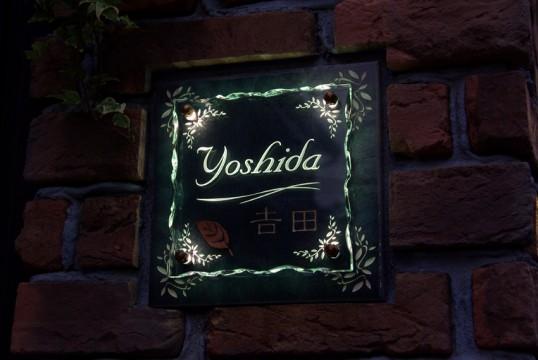 yoshidaFSLED2