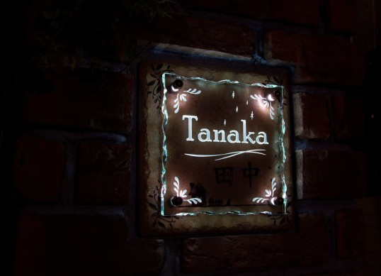tanakaFSLEDR1