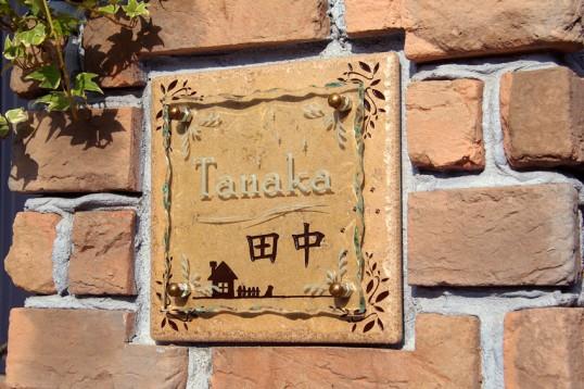 tanakaFSLEDR2