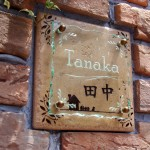 tanakaFSLEDR4