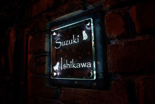 suzukiFS1