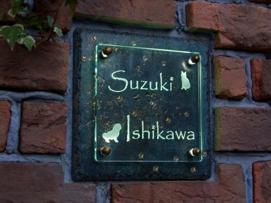 suzukiFS2