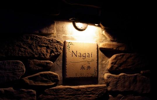 nagaiH1