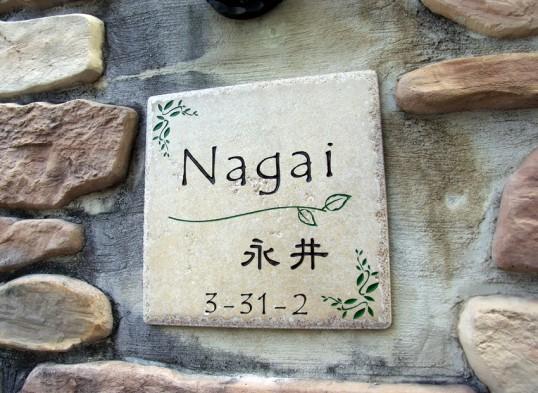 nagaiH2
