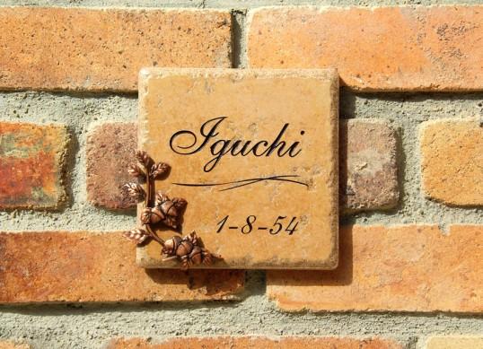 iguchi1