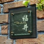 fukuiFS1