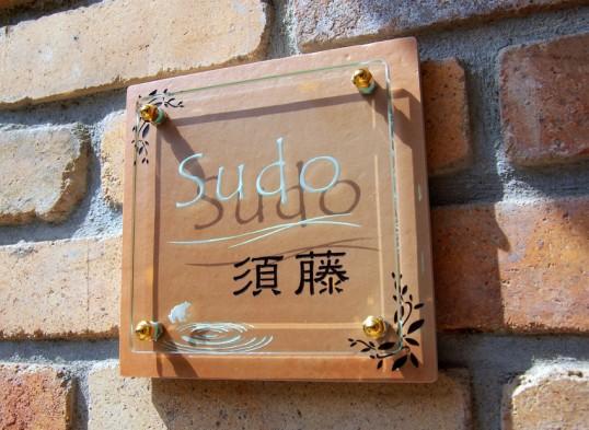 sudo1